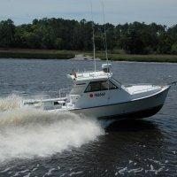 Gulf Stream Fishing Boat
